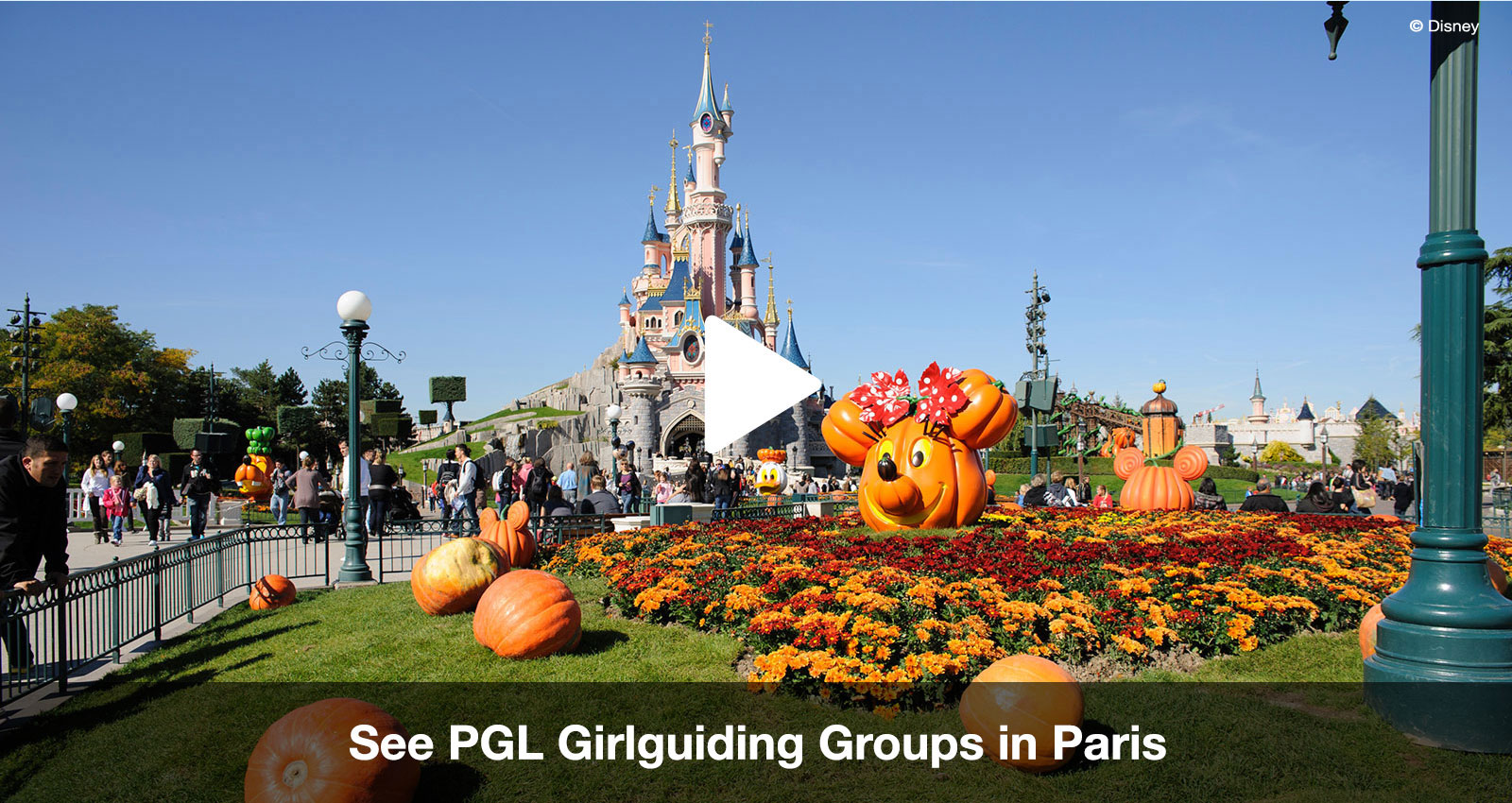Paris & Disney offers for Girlguiding UK groups