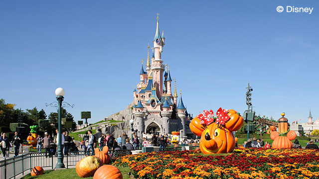Paris and Disney Offer
