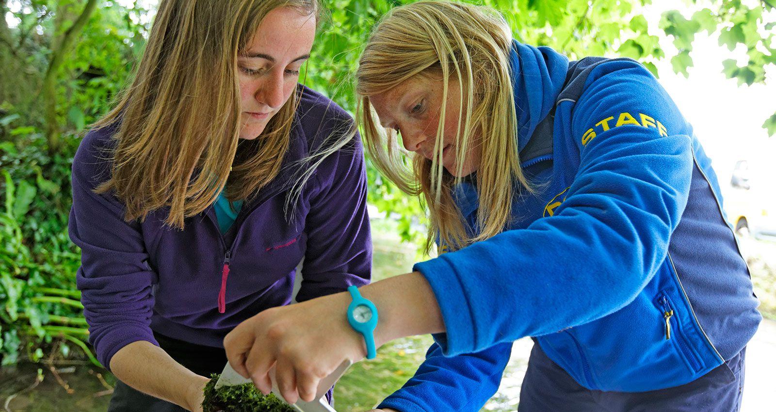 school fieldwork study Explore fieldwork opportunities on the map or search fieldwork using the form below program type (select all that apply): field school volunteer staff position.